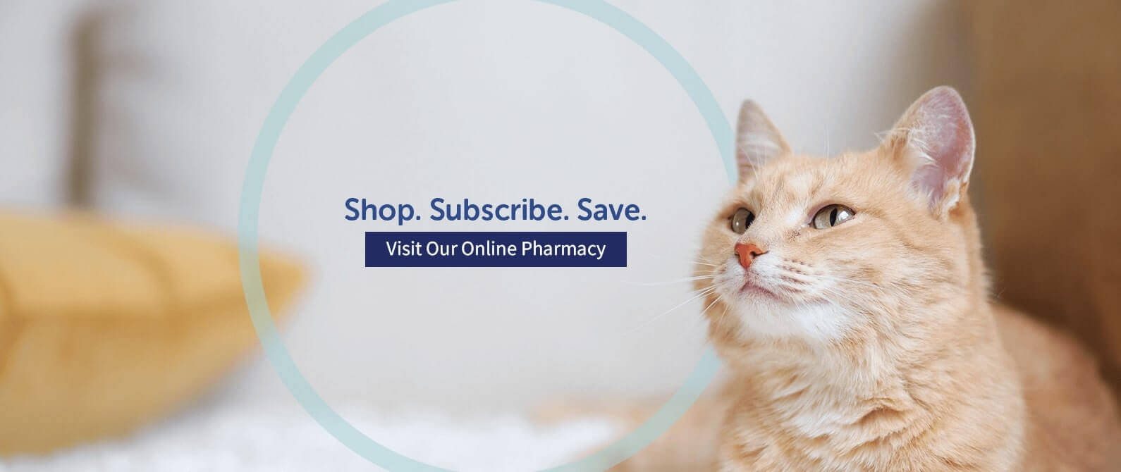 Slider Online Pharmacy
